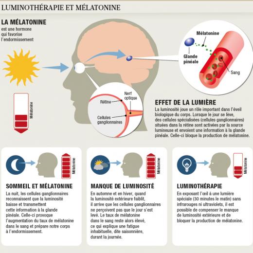 Action de la mélatonine - luminothérapie